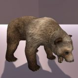 Grizzly Bear Free low-poly animated 3D model